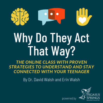 Why Do They Act That Way, The Online Class With Proven Strategies to Understand and Connect With Your Teen